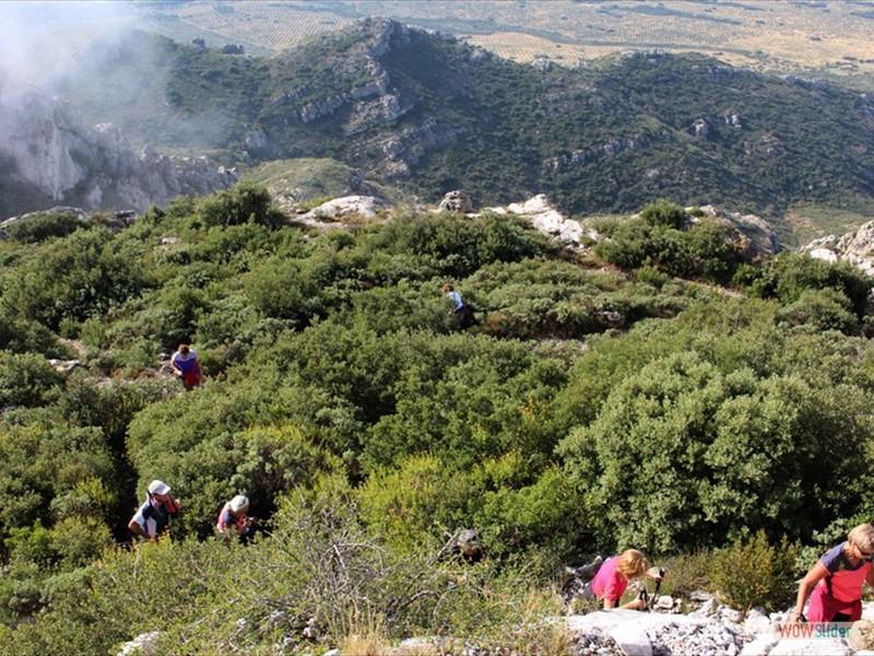 Les Alpilles - La tour des Opiés (07)