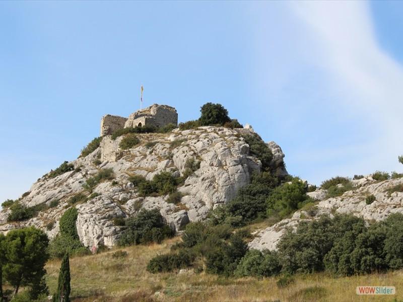 Les Alpilles - La tour des Opiés (12)