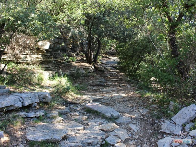 Grotte de Gorniés (4)